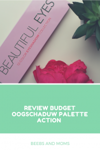 Review Action Budget Oogschaduw Palette
