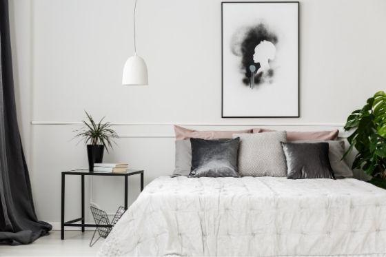 luchtzuiverende kamerplanten voor op de slaapkamer